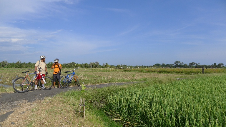 Makan Bebek & Bersepeda di Ubud